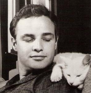 Marlon and cat